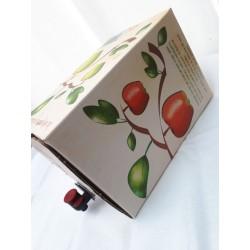 Jus de pommes 5l