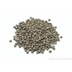 BIO Lentilles vertes 5kg